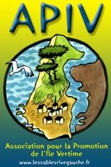 logo APIV net.jpg