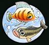 la pêche, les poissons....jpg